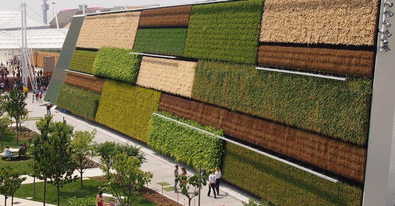Vertical Field's living wall at Expo Milan